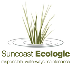 Suncoast Ecologic – AQUATIC WEED MANAGEMENT – AQUATIC WEED CONTROL – WATER WEED REMOVAL